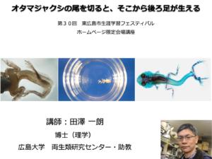 「オタマジャクシの尾を切るとそこから後ろ足が生える?!(田澤 一朗 助教)」東広島市生涯学習フェスティバル (2020/11/1)