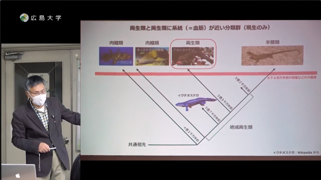 田澤一朗 助教「両生類の進化と多様性」